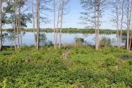 Объект недвижимости на Волге в д. Кадниково-Тверская областьКимрский район