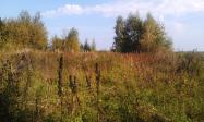 Продажаучастка на Волге в д.Каюровоплощадью30соток-Тверская областьКимрский район