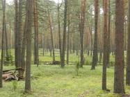 Объект недвижимости на Волге в пос.Белый Городок-Тверская областьКимрский район
