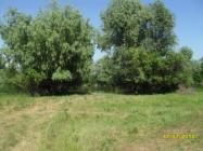 Объект недвижимости на Волге в с Хмелевка-Астраханская областьКамызякский район
