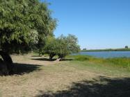 Объект недвижимости на Волге в с.Полдневое-Астраханская областьКамызякский район
