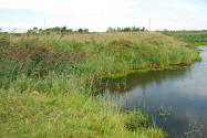 Объект недвижимости на Волге в д.Никулино-Тверская областьКалининский район