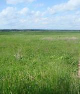 Объект недвижимости на Волге в д.Молозвино-Тверская областьЗубцовский район