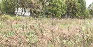 Объект недвижимости на Волге в д.Назарово-Тверская областьКимрский район