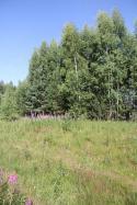 Объект недвижимости на Волге в д.Алексино-Тверская областьКонаковский район