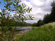 Объект недвижимости на Волге в д. Струйское-Тверская областьРжевский район