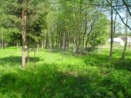 Объект недвижимости на Волге в д.Сорокино-Московская областьТалдомский район