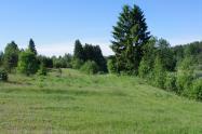 Объект недвижимости на Волге в д.Речане-Тверская областьТоропецкий район