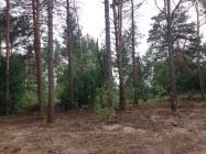Объект недвижимости на Волге в пос.Игуменка-Тверская областьКонаковский район