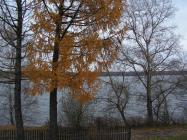 Объект недвижимости на Волге в д.Лунево-Костромская областьКостромской район