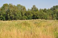 Объект недвижимости на Волге в г.Плес-Ивановская областьПриволжский район