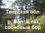 Объект недвижимости на Волге в д.Першино-Тверская областьРжевский район