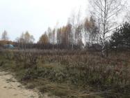 Объект недвижимости на Волге в д.Алексино-Тверская областьКимрский район