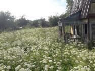 Объект недвижимости на Волге в СНТ Волжанка-Тверская областьКимрский район