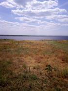 Объект недвижимости на Волге в с.Березняки-Саратовская областьВоскресенский район