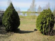 Объект недвижимости на Волге в с.Свердлово-Тверская областьКонаковский район