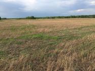 Объект недвижимости на Волге в д.Малое Василёво-Тверская областьКимрский район