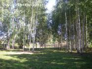 Продажаучастка на Волге в д.Башариноплощадью15соток-Тверская областьКимрский район