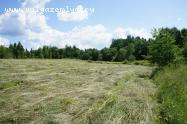 Объект недвижимости на Волге в д.Зыковщина-Новгородская областьДемянский район